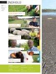 Tørke giver 3 sved på panden - Jysk Landbrugsrådgivning - Page 2