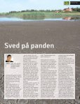 Tørke giver 3 sved på panden - Jysk Landbrugsrådgivning - Page 3