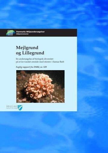 Mejlgrund og Lillegrund - En undersøgelse af biologisk diversitet på ...