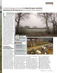 reportage allemagne - MT-Energie - Page 2