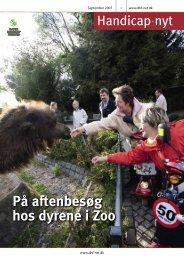 På aftenbesøg hos dyrene i Zoo - Dansk Handicap Forbund