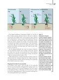 MILJØBIBLIOTEKET Iltsvind - Page 4