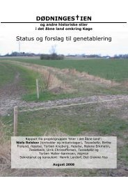 DØDNINGES†IEN Status og forslag til genetablering - Det Grønne Hus