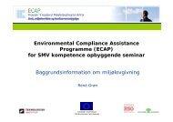 Programme (ECAP) for SMV kompetence opbyggende seminar ...
