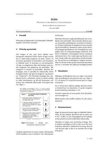 Bestemmelse af Salmonella i kød ved ELISA