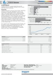 Investeringsprofil Kommentar - Sydinvest