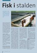 Fisk i stalden Pommesfrites og hans halve skib Fra ... - AquaCircle - Page 2