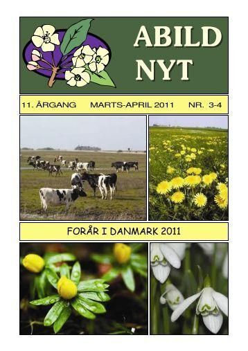 Mar-Apr - NYSYNET.DK