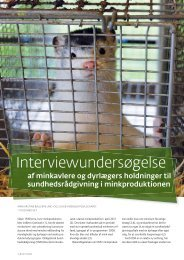 Interviewundersøgelse - Elbo
