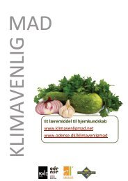Et læremiddel til hjemkundskab - klimavenlig mad
