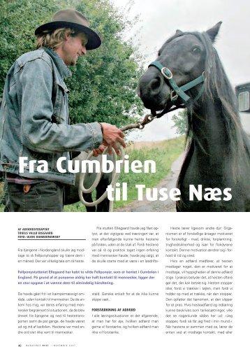 Fra Cumbrien til Tuse Næs - Hestemagasinet.dk