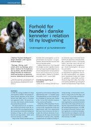 Forhold for hunde i danske kenneler i relation til ny lovgivning - Elbo