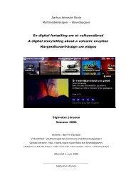 Rapport - PDF