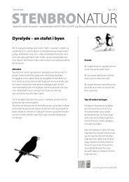 Dyrelyde – en stafet i byen - Naturhistorisk Museum