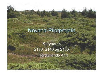 Nordjyllands Amt