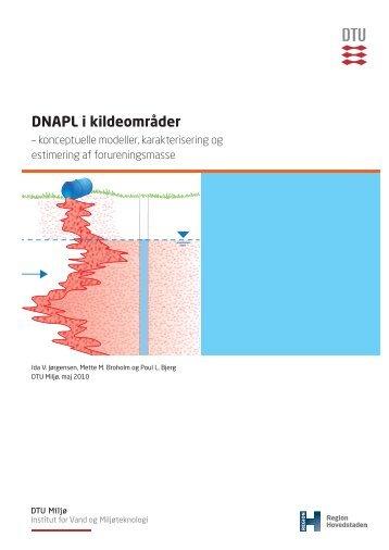 DNAPL i kildeområder - Danmarks Tekniske Universitet