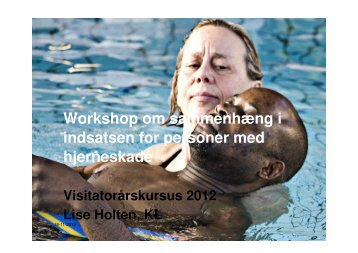 Sammenhængende indsats for personer med hjermeskade, Lise ...