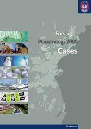 ps07 cases.indd - Aarhus.dk