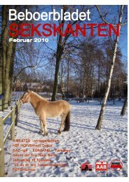 spil - KORSANG - Beboerbladet Sekskanten