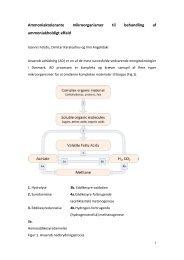 Ammoniaktolerante mikroorganismer til biogasanlæg - Biopress
