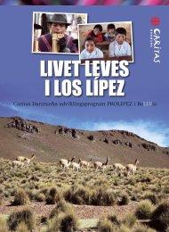 Caritas Danmarks udviklingsprogram PROLIPEZ i BoLIVia