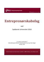 Entreprenørskabsfag ved Syddansk Universitet 2010 - Idea