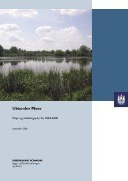 Pleje- og udviklingsplan for Utterslev Mose 2004-2008