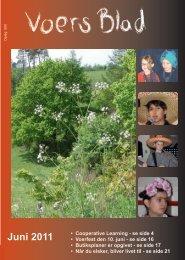 Voers Blad - December 2010 - Fællesråd
