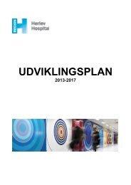 2013 - Herlev Hospital