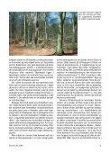 Svampe 41 - Page 7