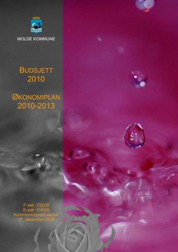 Budsjett 2010 Økonomiplan 2010-2013