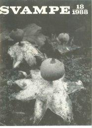 Svampe på Brændenælder
