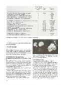 Svampe på Brændenælder - Page 6