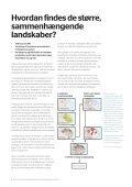 Større sammenhængende landskaber og ... - Naturstyrelsen - Page 6
