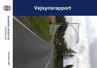 vejsynsrapport - version3