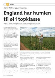 England har humlen til øl i topklasse - AgroTech