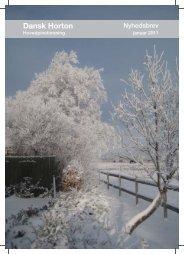 Jan 2011 - Dansk Horton Hovedpine Forening