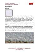 De klassiske pigmenter - Center for Bygningsbevaring - Page 5