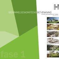 Bedømmelseskomiteens betænkning (fase 1) - Region ...