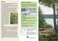 Rold Skov - Naturstyrelsen