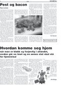 Marihuanamartyr Pest & bacon - Gateavisa - Page 2
