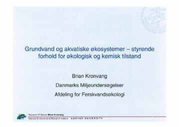 Grundvand og akvatiske økosystemer- styrende forhold for økologisk ...