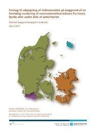 Baggrundsrapport KDI a...
