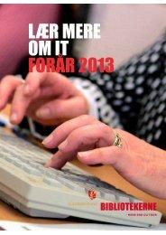 LÆR MERE OM IT FORÅR 2013 - Guldborgsund-bibliotekerne