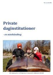 Private daginstitutioner - en minihåndbog - MDI