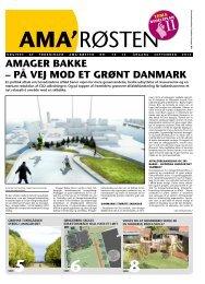 75_2012 - Amager Øst Lokaludvalg