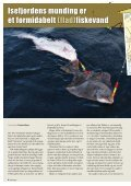 FISK OG - Fiskeringen - Page 4