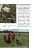 Den kystnære naturs planterigdom - Page 4