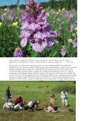 Den kystnære naturs planterigdom - Page 6