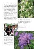 Den kystnære naturs planterigdom - Page 7